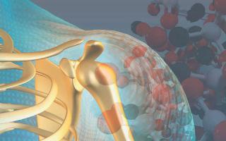 Функции паратиреоидного гормона, что такое ПТГ, норма и отклонения паратгормона