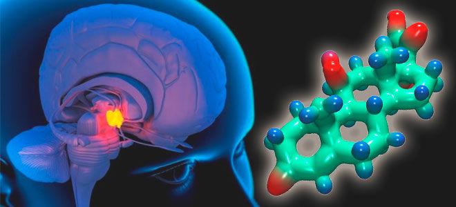 Функции адренокортикотропного гормона (АКТГ), анализ и норма показателя
