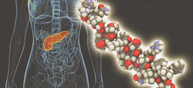 Что такое глюкагон, функции и норма гормона