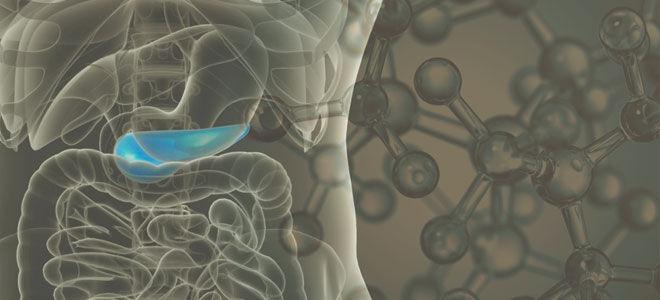 Функции с-пептида в организме и что это такое, норма вещества, анализ на гормон