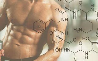 Влияние гормона роста и его функции, норма соматропина, лечение нарушений