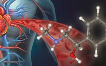 Что вызывает выброс в кровь адреналина? Причины, симптомы, лечение