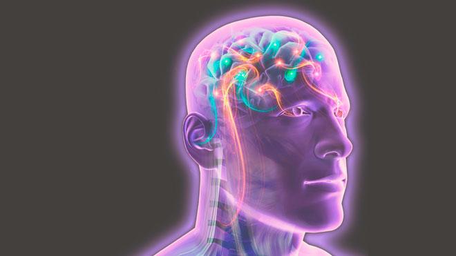 Сигналы мозга