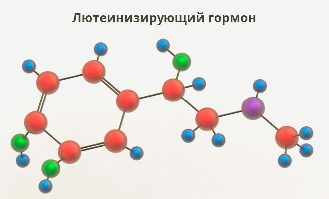 Молекула лютеинизирующего гормона