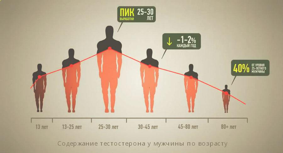 Содержание тестостерона у мужчины по возрасту